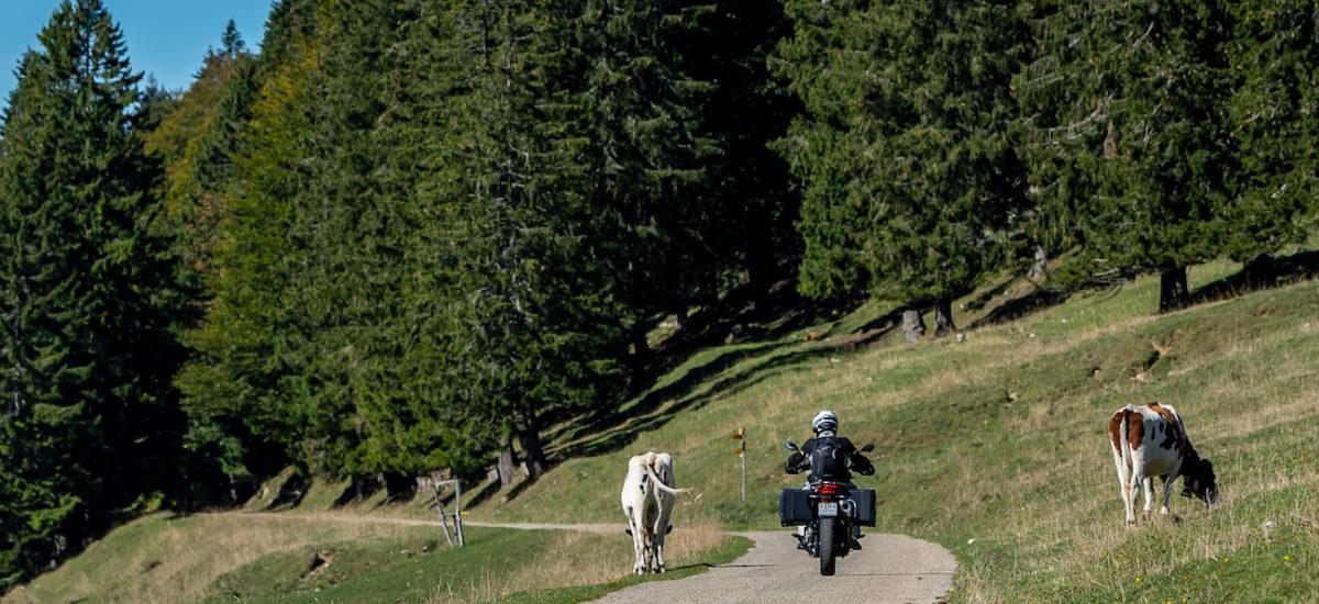 ActuMoto organise une balade guidée à moto d'une journée