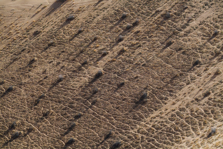 Galerie Dakar 2020 par ActuMoto.ch
